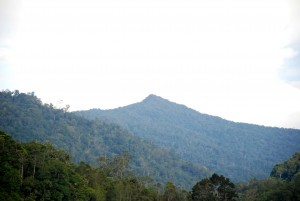 Pandangan dekat gunung Nunuk Sirung