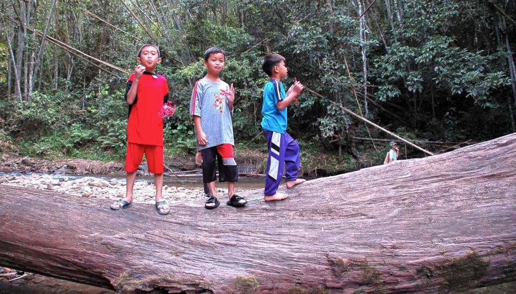Watang (kayu) besar yang dihanyutkan air sungai Molout.